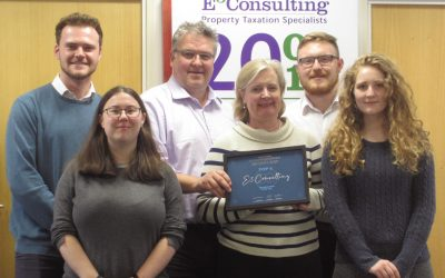 E3 Consulting – 2019 Finalist, Specialist Team of the Year